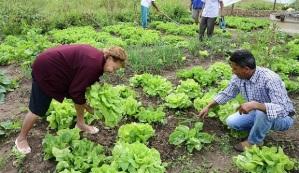 """""""Uma prática agrícola diferenciada que pode ser um contraponto ao que conhecemos como agronegócio"""" / Carlos Alberto/ Fotos Públicas"""